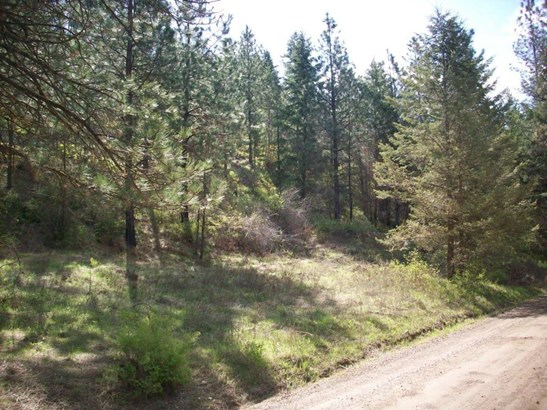 2529 Hall Creek Rd, Inchelium, WA - USA (photo 1)