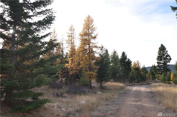 0 Summit Ridge Rd, Tonasket, WA - USA (photo 4)