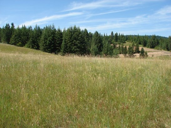Lot 3 Ceres Drive, Lenore, ID - USA (photo 1)