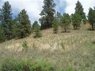 Lot 84 Spring Creek Ranch, Helena, MT - USA (photo 2)