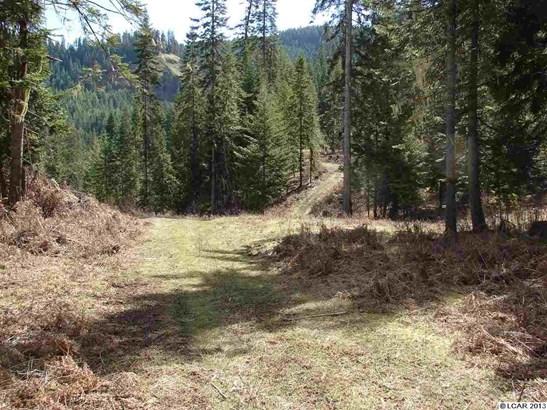 Tbd Lot 13c Indian Creek Rd, Orofino, ID - USA (photo 3)