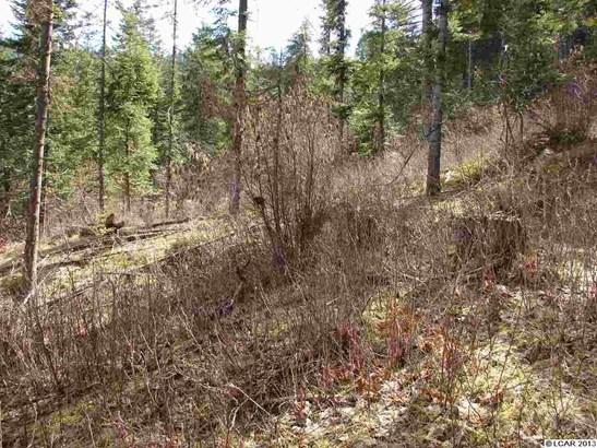 Tbd Lot 13c Indian Creek Rd, Orofino, ID - USA (photo 4)
