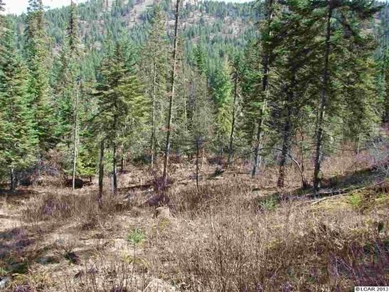 Tbd Lot 13c Indian Creek Rd, Orofino, ID - USA (photo 5)