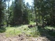 Lot 6 Ceres Drive, Lenore, ID - USA (photo 1)
