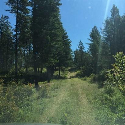 X Jackson Rd, Elk, WA - USA (photo 1)