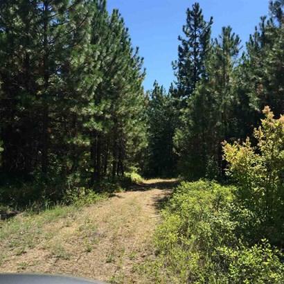 X Jackson Rd, Elk, WA - USA (photo 3)