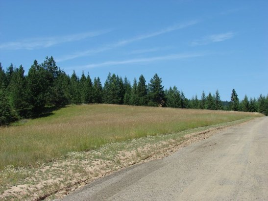 Lot 1 Ceres Drive, Lenore, ID - USA (photo 1)