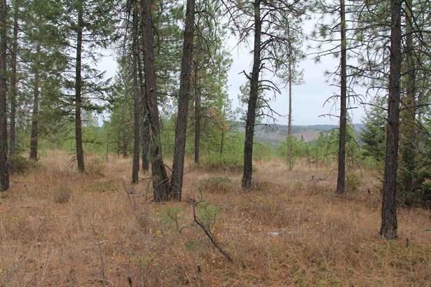 Lot 1 Woods Way, Springdale, WA - USA (photo 3)