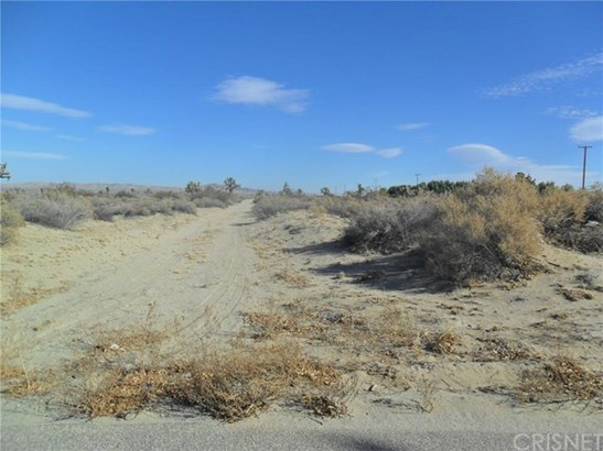 Land/Lot - El Mirage, CA (photo 5)