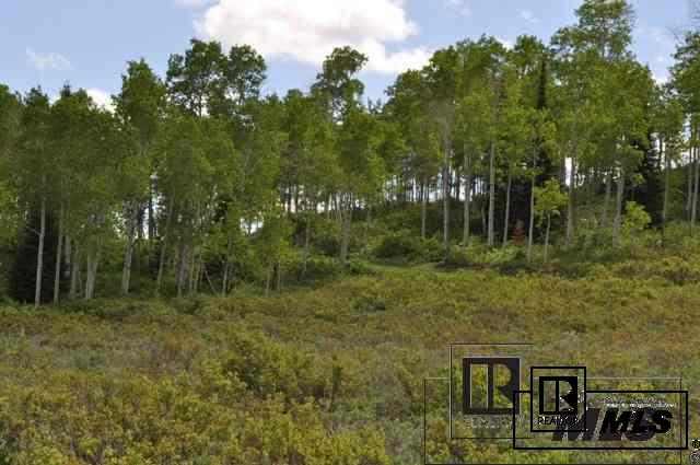 Lot 23 Rabbit Ears Village, Kremmling, CO - USA (photo 2)