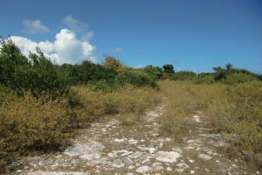 The Settlement - VGB (photo 1)