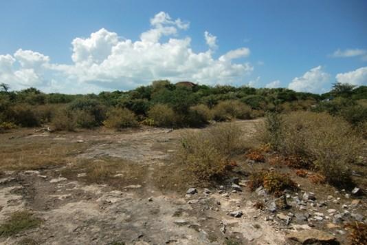 The Settlement - VGB (photo 3)