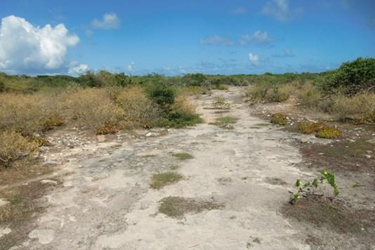 The Settlement - VGB (photo 4)