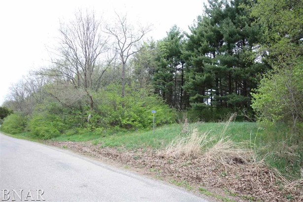 2088 County Road 900 N, Secor, IL - USA (photo 2)