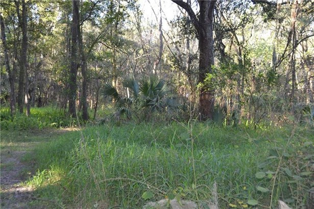 5001 State Road 60, Dover, FL - USA (photo 5)