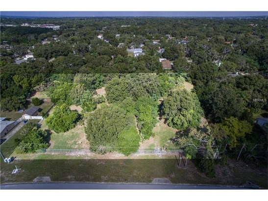 1639 Georgia Avenue, Palm Harbor, FL - USA (photo 5)