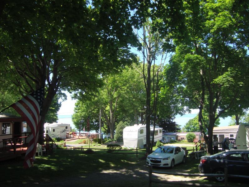 7945 Lake Road, Sodus, NY - USA (photo 5)