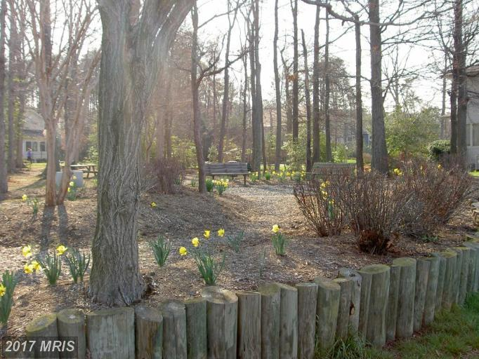 Lot-Land - SWAN POINT, MD (photo 5)
