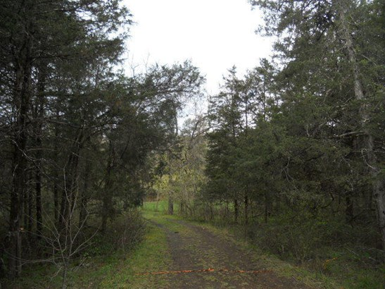 Land (Acreage), Lots/Land/Farm - Buchanan, VA (photo 2)
