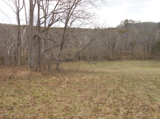 Land (Acreage), Lots/Land/Farm - Glade Hill, VA (photo 5)