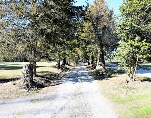Residential, Ranch - Kenbridge, VA (photo 5)