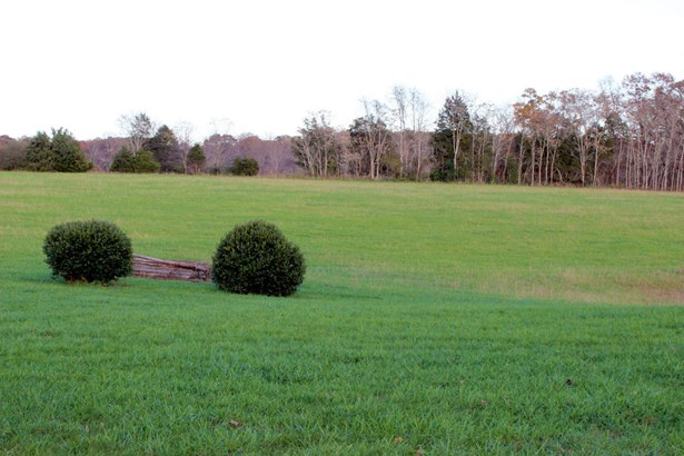 1 & 1/2 Story, Residential - Glade Hill, VA (photo 3)