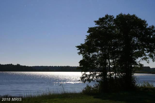 Lot-Land - PRESTON, MD (photo 1)