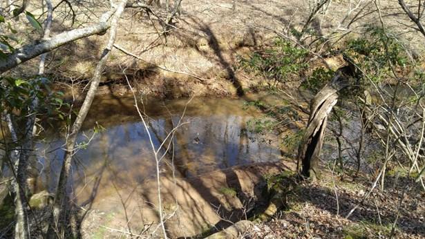 Land (Acreage), Lots/Land/Farm - Bedford, VA (photo 5)