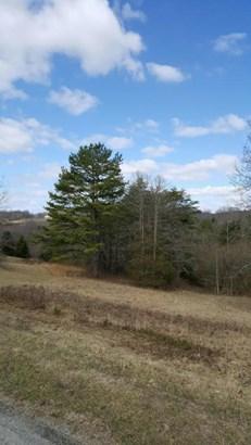 Lot, Lots/Land/Farm - Ferrum, VA (photo 4)