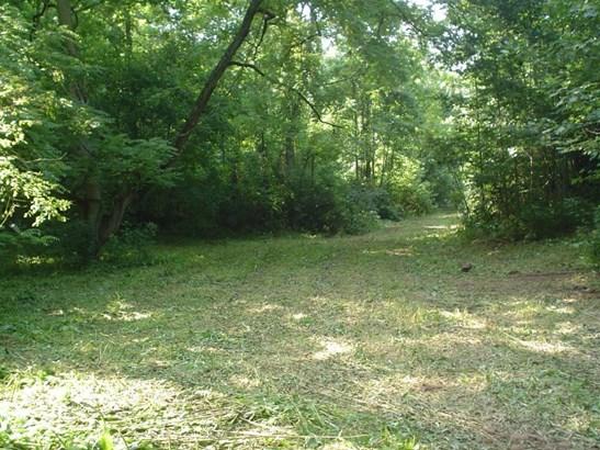 Land (Acreage), Lots/Land/Farm - Buchanan, VA (photo 1)