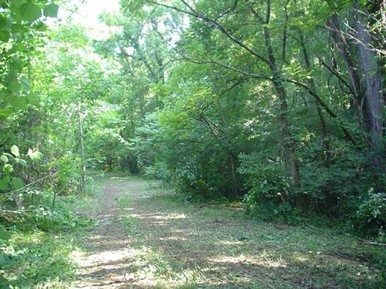 Land (Acreage), Lots/Land/Farm - Buchanan, VA (photo 3)