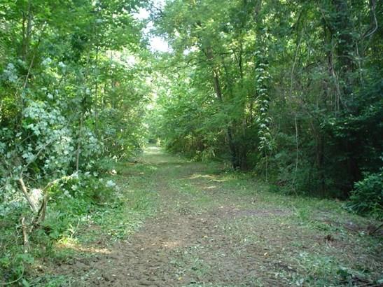 Land (Acreage), Lots/Land/Farm - Buchanan, VA (photo 5)