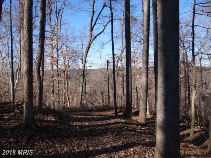 Lot-Land - MCLEAN, VA (photo 2)