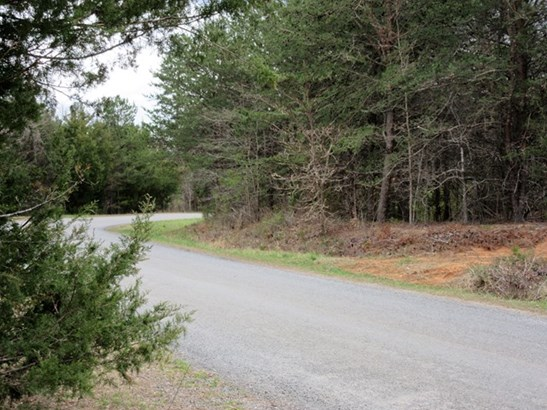 Mobile Home/Double, Single Family, Timber, Modular/Manufactured - Lots/Land/Farm (photo 3)