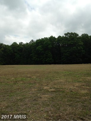 Lot-Land - CORDOVA, MD (photo 5)