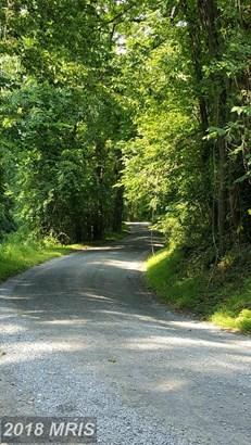 Lot-Land - LOVETTSVILLE, VA (photo 4)