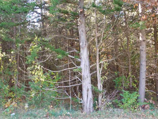 Vacant Lot - Clermont (photo 1)
