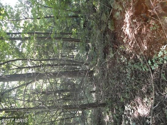 Lot-Land - CASCADE, MD (photo 3)