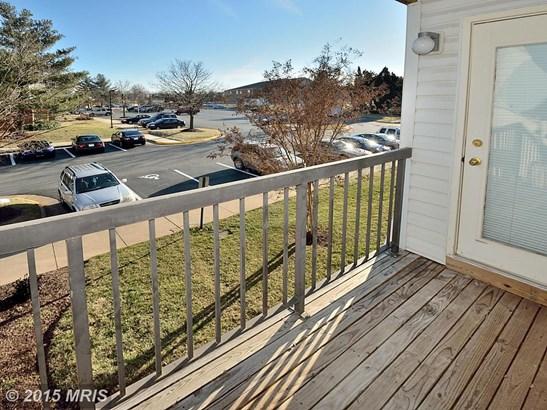 Garden 1-4 Floors, Contemporary - DUMFRIES, VA (photo 1)