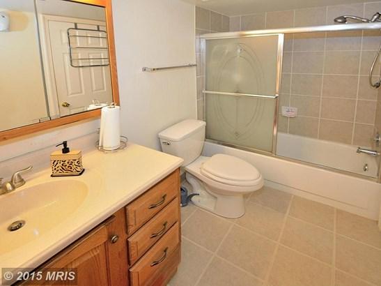 Garden 1-4 Floors, Contemporary - DUMFRIES, VA (photo 2)