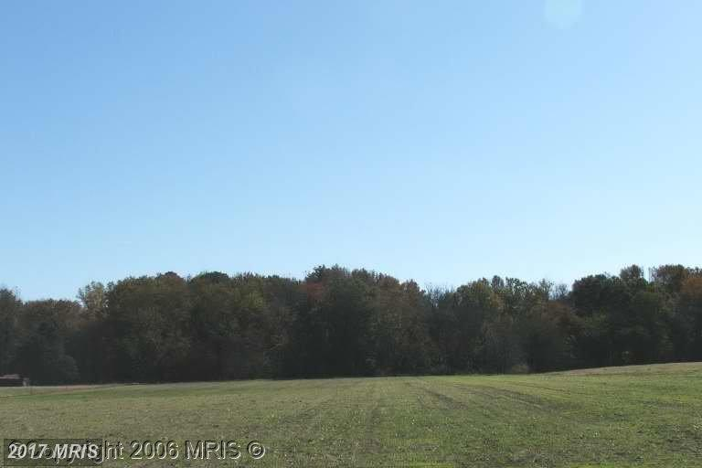 Lot-Land - RIDGELY, MD (photo 1)