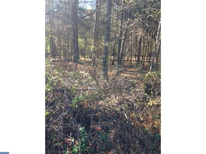 Lot-Land - UPPER BLACK EDDY, PA (photo 4)