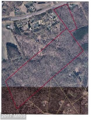 Lot-Land - BEALETON, VA (photo 1)