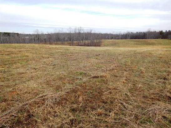 Farmland, Timber, Orchard, Beef Cattle, Lots/Land/Farm - Nathalie, VA (photo 1)