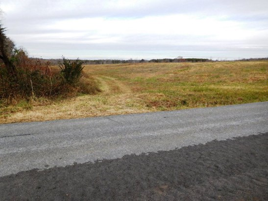 Farmland, Timber, Orchard, Beef Cattle, Lots/Land/Farm - Nathalie, VA (photo 2)