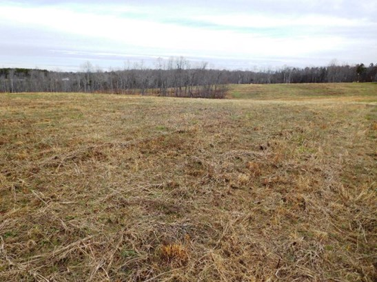 Farmland, Timber, Orchard, Beef Cattle, Lots/Land/Farm - Nathalie, VA (photo 4)