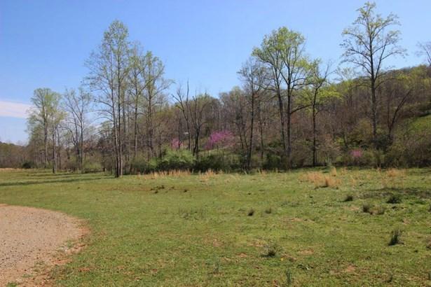 Farm, Horse - Moneta, VA (photo 5)