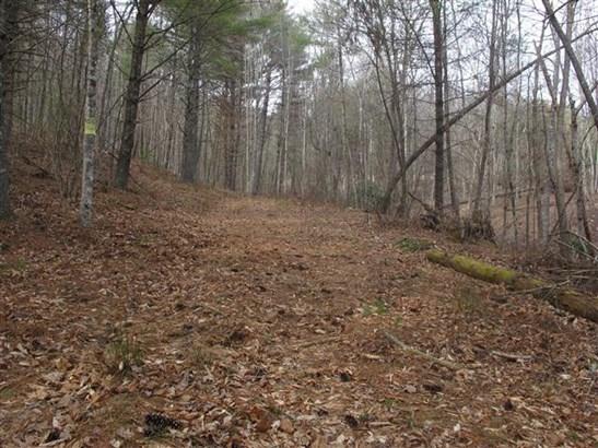 Land (Acreage), Lots/Land/Farm - Willis, VA (photo 2)