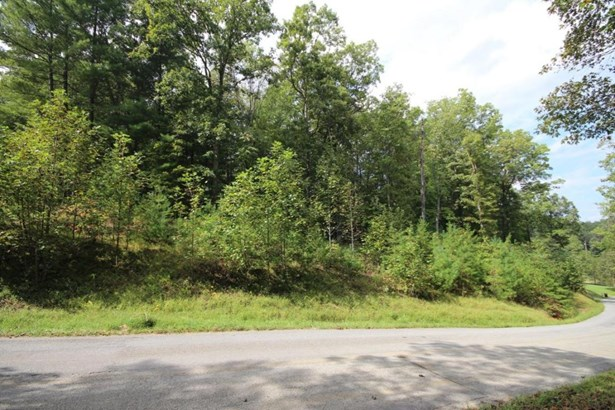 Lot, Lots/Land/Farm - Boones Mill, VA (photo 3)