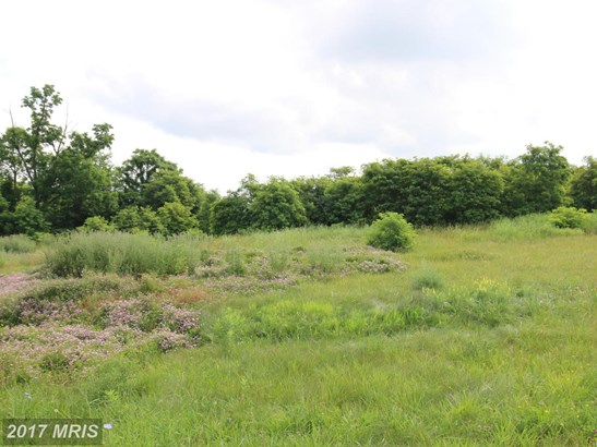 Lot-Land - CHARLES TOWN, WV (photo 4)